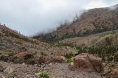 Cloudy Day in El Teide National Park — Stockfoto