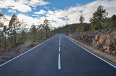 Road on Cloudy Day in El Teide National Park — Stockfoto