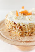 Apricot Cream Cake — Stock Photo