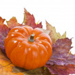 Pumpkin with Colorful autumn leaves — Stock Photo