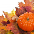 Colorful autumn leaves with Pumpkin — Stock Photo #13814873