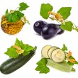 Collection of fresh vegetable : zucchini , melon , aubergine , marrow with leaves and flowers isolated on a white background - Stock Photo