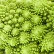 Cabbage romanesco broccoli macro — Stock Photo