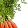 Bunch carrot on white background — Stock Photo
