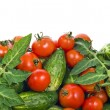 Fresh tomatoes and cucumbers background - Stock Photo