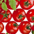 Red tomatoes on white — Stock Photo