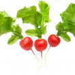 Red radish — Stock Photo