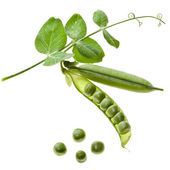 Ripe green pea in the pod isolated on white background — Stock Photo