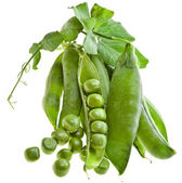 Verse groene erwt in de pod geïsoleerd op witte achtergrond — Stockfoto