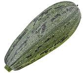 Fresh zucchini fruit isolated on white background — Stock Photo