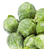 Brussels sprouts in closeup over white background — Stok fotoğraf
