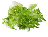 Fresh lettuce salad leaf isolated on white background — Stock Photo