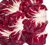 Fresh Red Cabbage Radicchio Rosso leaf texture isolated on white — Stock Photo