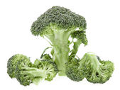 Broccoli cabbage isolated on white background — Stock Photo