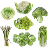 Collection green cabbage isolated on white background — Stock Photo