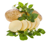 Fresh potato tubers with a flower isolated on white — Stock Photo