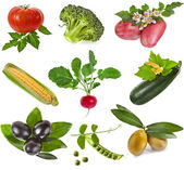 Collection of fresh ripe healthy and nutritious vegetables isolated on white background — Stock Photo