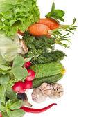 孤立在白色背景上的新鲜蔬菜 — 图库照片