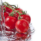 Fresh tomatoes with pouring water — Stock Photo