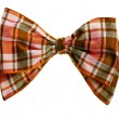 Handmade scottish bow tie - Stock Photo