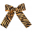 Striped ribbon bow — Stock Photo #13835116