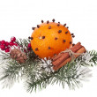 Orange - clove with fir twig isolated on a white background — Stock Photo