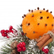 Orange - clove with fir twig isolated on a white background - Foto de Stock