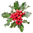 Sprig of European holly ilex christmas decoration isolated on white — Stock Photo #13836966