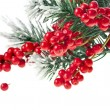 Royalty-Free Stock Photo: Christmas fir decoration with red berries isolated on white