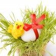 White egg wrapped around with red ribbon in fresh spring grass over white background - Стоковая фотография