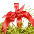 Easter egg in fresh spring grass - Foto Stock