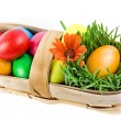 Stock Photo: Colorful easter egg