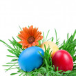 Color Easter eggs in the green nest on white background - Stock Photo