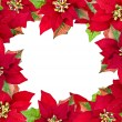 Royalty-Free Stock Photo: Christmas frame from poinsettias isolated on white