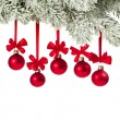 Stock Photo: Christmas branch with red balls on white