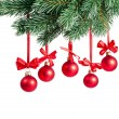 Christmas branch with red balls on white — 图库照片 #13837671