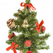 Christmas tree on white background — Stock Photo