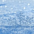 Winter background with snowflake — Stock Photo
