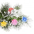 Christmas branch — Stock Photo