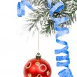 Christmas branch with red ball isolated on white background — Stock Photo