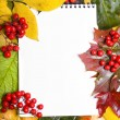 Notepad with frame of autumn leaves — Stock Photo