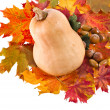 Stock Photo: Pumpkin in Colorful autumn leaves isolated on white