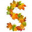 Letter S made of autumn leaves — Stock Photo