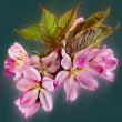 Pink cherry blossom decoration — Stock Photo