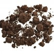 Stock Photo: Pile of soil humus isolated on white
