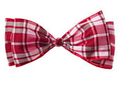 Handmade scottish bow tie — Stock Photo
