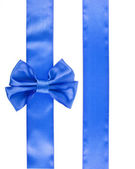 Blue ribbon bow geïsoleerd op witte achtergrond — Stockfoto