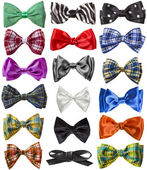 Collection of colorful ribbon bows isolation on a white background — Stock Photo