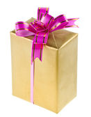 Present box with bow isolated — Stock Photo
