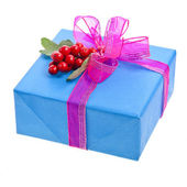 Gift box with ribbon bow and red christmas berries isolated on white — Stock Photo